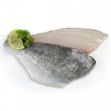 Gilt head Bream fillets x 2